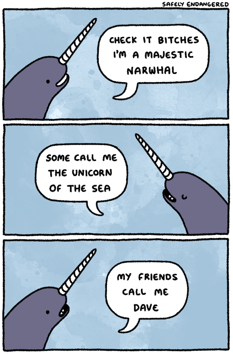 Funny pictures about i m a majestic narwhal oh and cool pics about i m a majestic narwhal also i m a majestic narwhal