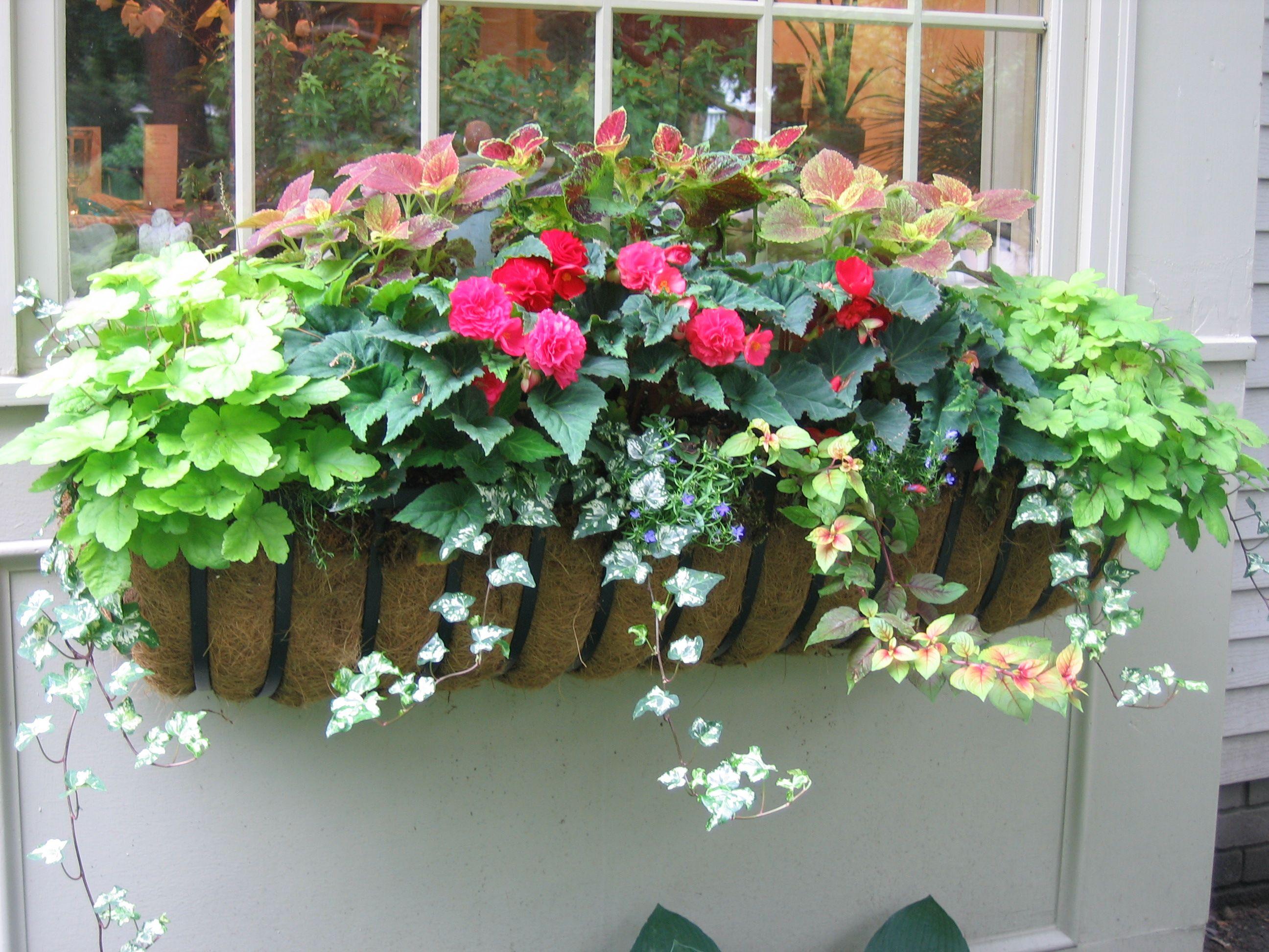 patio flower ideas - Patio Flower Boxes Ideas