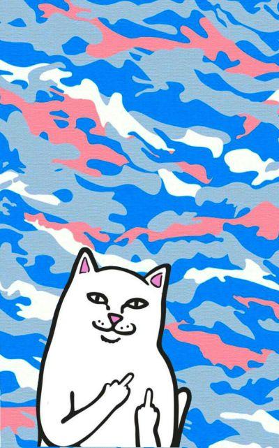 Ripndip iphone wallpaper #ripndip #middle #finger #cat #wallpaper #iphone #pink #blue # ...