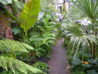 Tropical landscaping Garden Backyard Ideas | Tropical ...