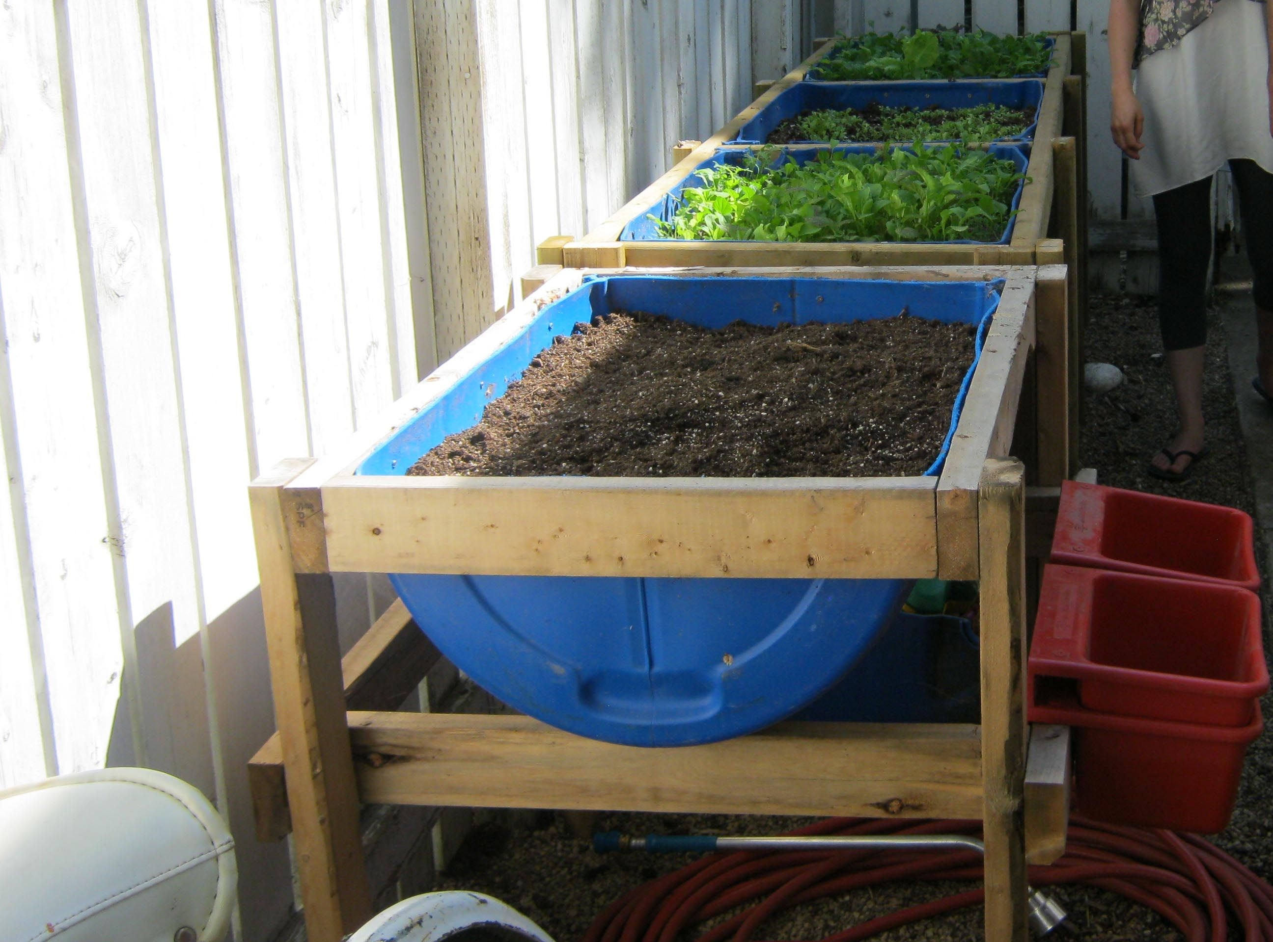 Elevated Plant Stands Raised Planter Stand Drums Barrels And Raising