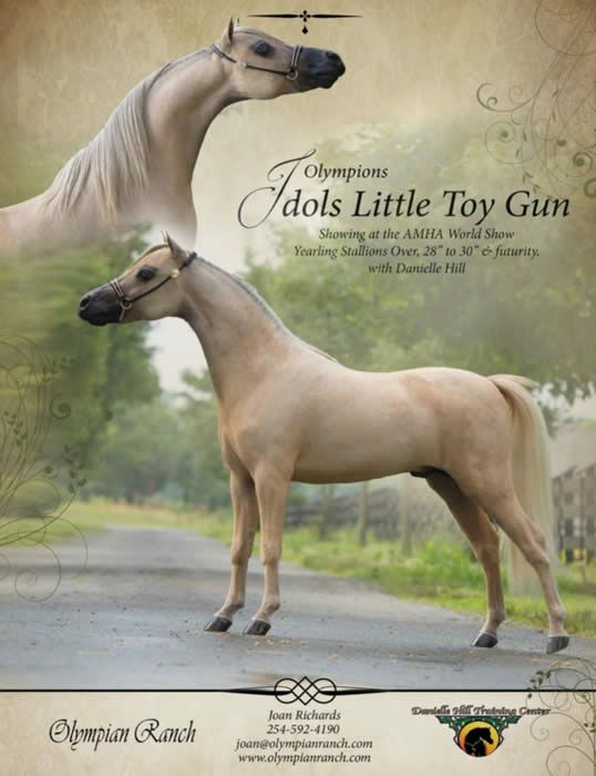 Horse Sales Contracts  EnvResumeCloudInterhostsolutionsBe