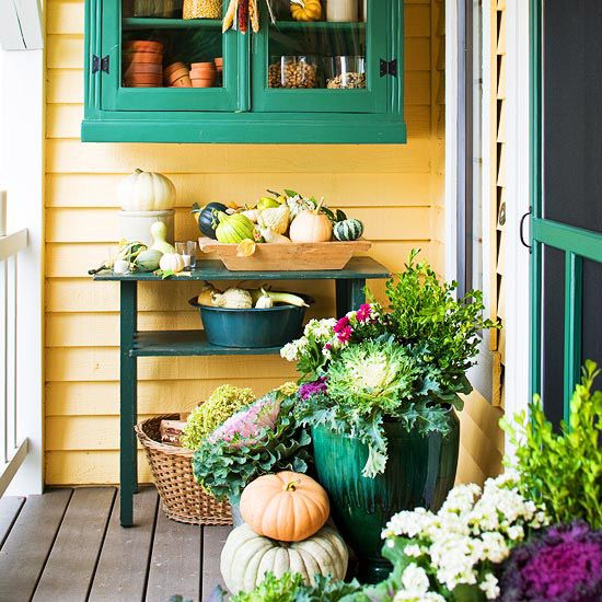 Gorgeous Gourds And Pumpkins For Fall Decorating | Cabbages, Teal