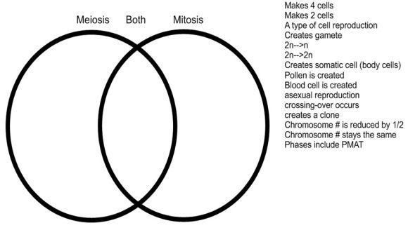 venn diagram of mitosis and meiosis