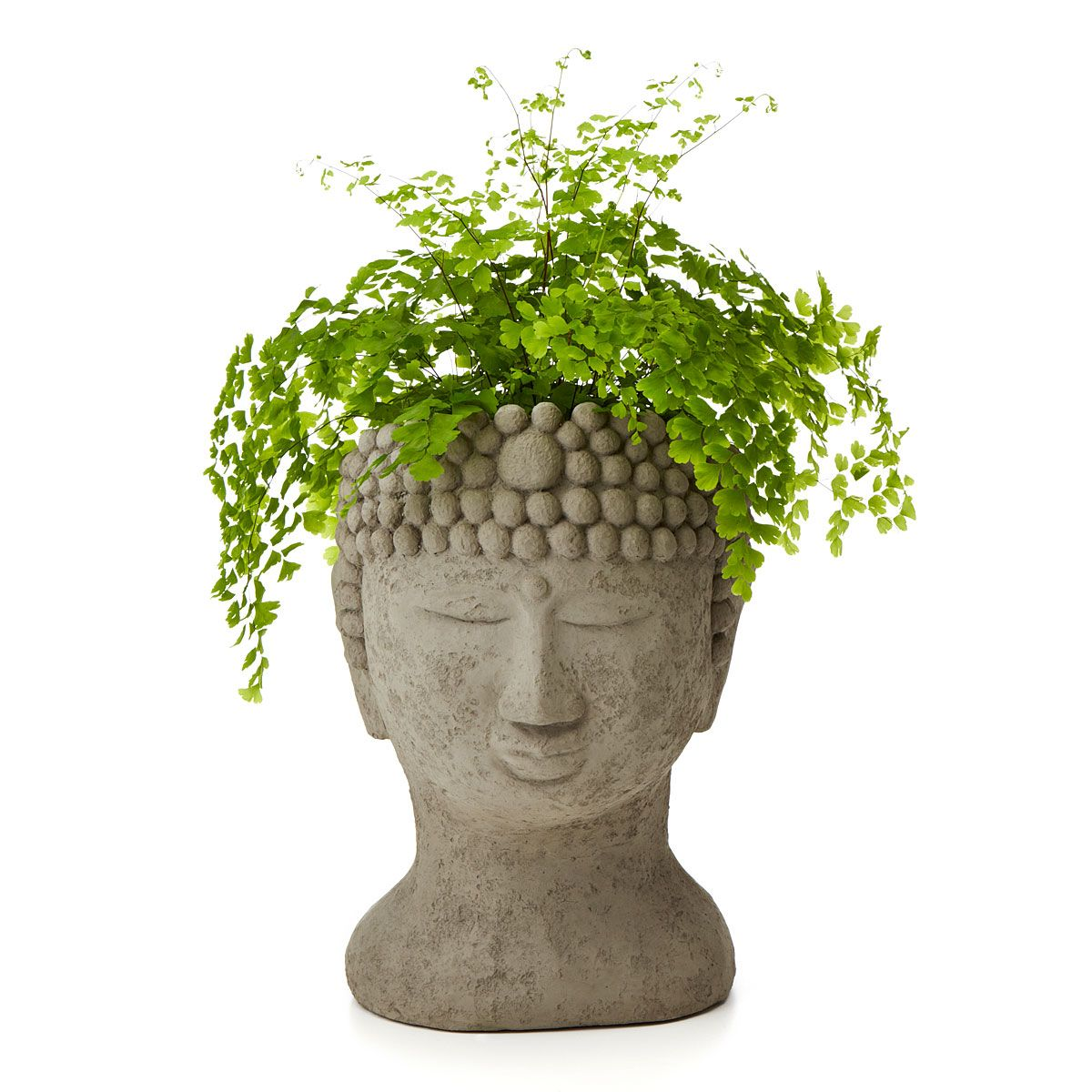 Planter Heads Buddha Head Planter Head Planters Buddha Head And Buddha