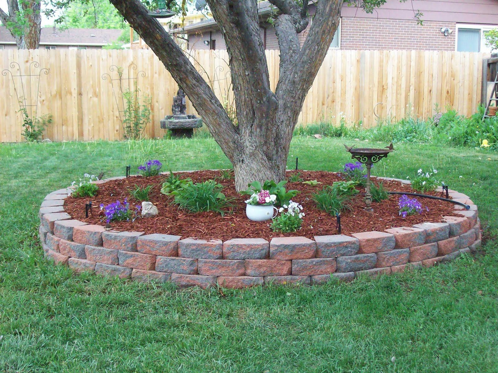 5 awesomely easy landscaping projects landscaping around treesmulch around treesbackyard landscapingsimple landscaping ideaslandscape