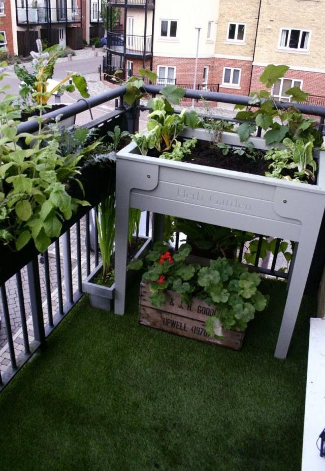 Umgestaltung Krautergarten Dachterrasse | Ocaccept.Com