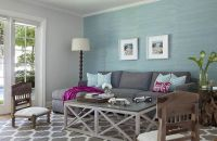 Aqua blue and charcoal gray living room features an accent