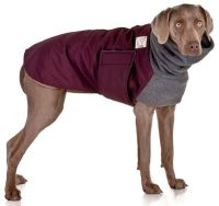 WEIMARANER Winter Dog Coat, Winter Coat, Winter Clothes ...