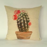 Cactus cushion, Cactus pillow, houseplants cushion
