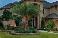 Beautiful Designs Front Yard Landscaping Ideas With Palm