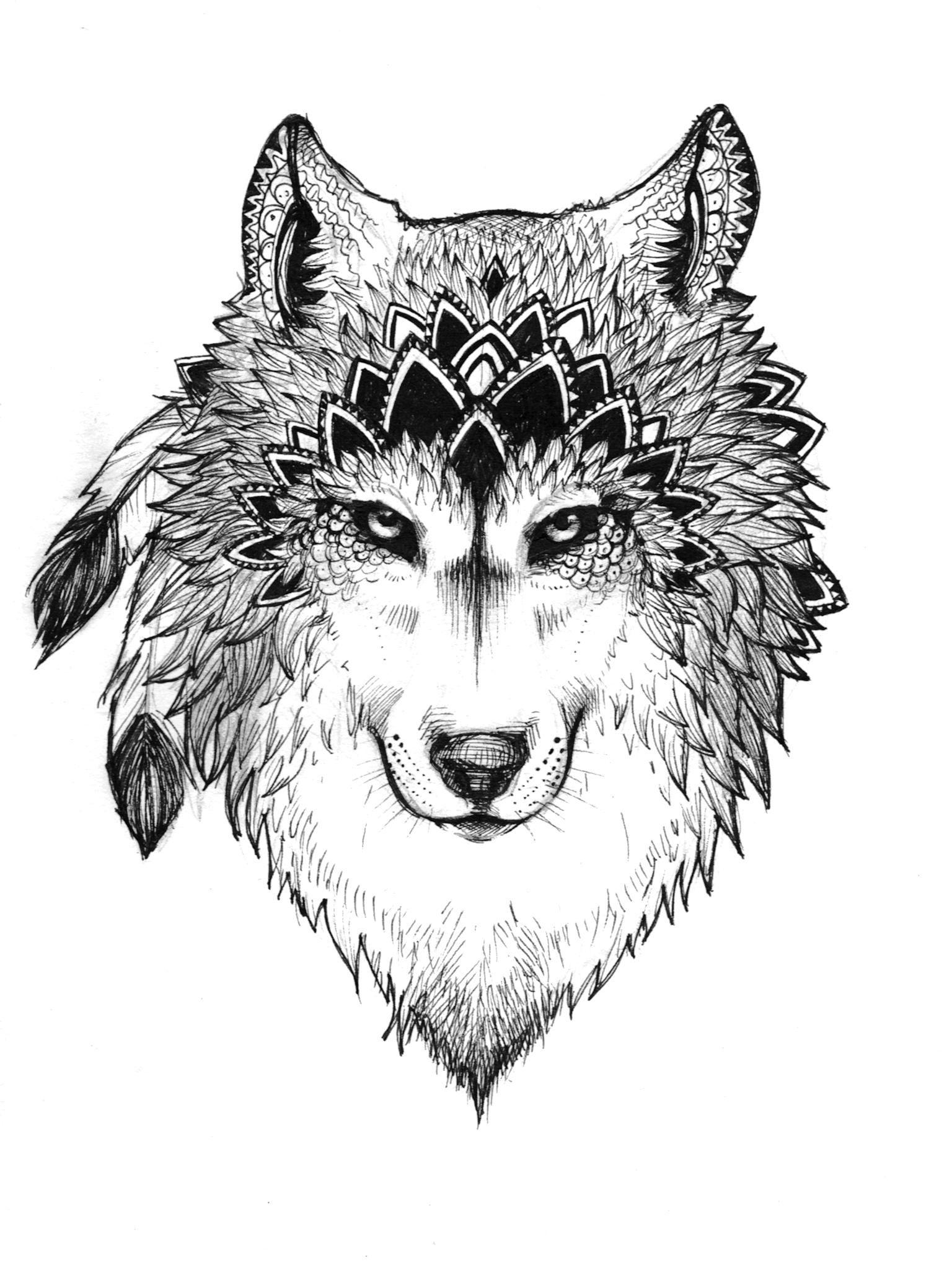 Cute Elephant Design Wallpaper Wolf Illustration Tumblr Www Pixshark Com Images