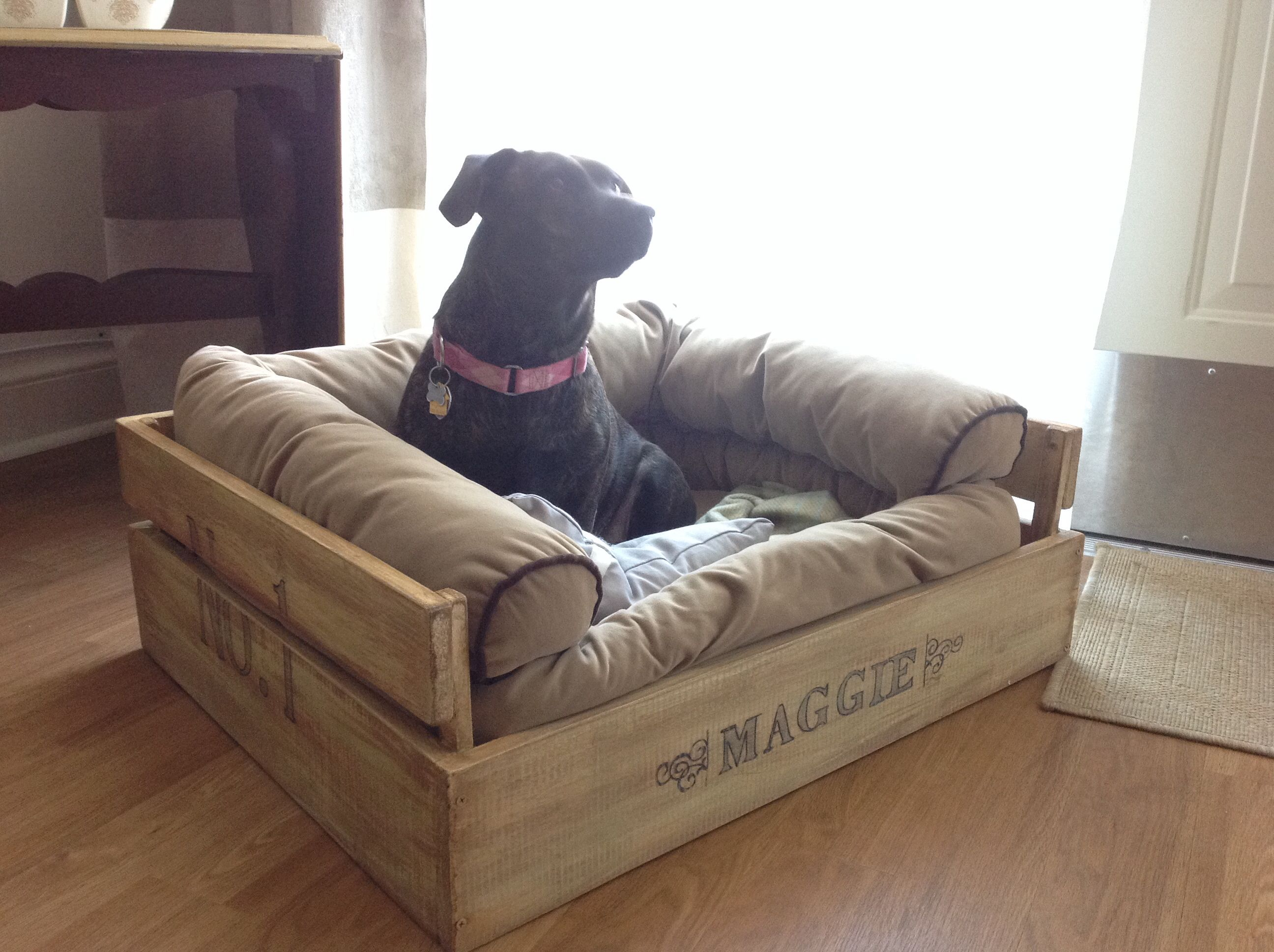 Diy Hundebett Diy Comfy Crate Dog Bed Just Write The Name On With A