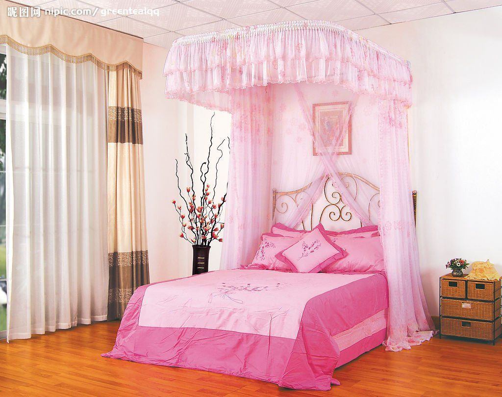 Little Girl Canopy Bed Ideas Bed Canopy Pinterest Canopy Disney Bedrooms And P