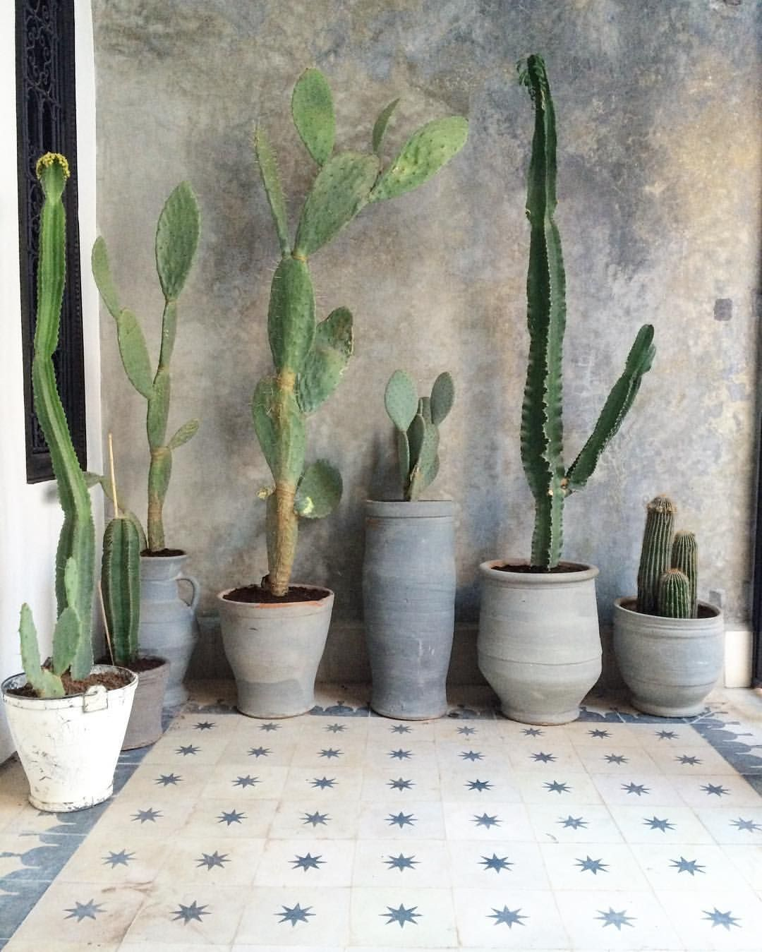 Floor Plants Indoor Wabi Sabi Inspiration Interior Design Bathroom Design