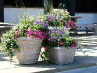 Easy Flower Pot Ideas for Garden  Home Designs | Lovely ...