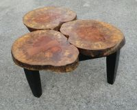 Gorgeous Tree Stump Coffee Tables Collection : Dazzling ...