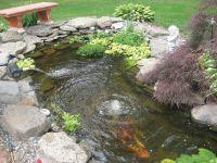 Small Koi Pond Kits | Garden pond and Koi Pond Aeration ...