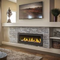 Napoleon LV50N Vector 50 Direct Vent Gas Fireplace ...