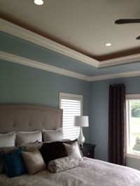tray ceiling paint ideas | Tray ceiling master and dining ...