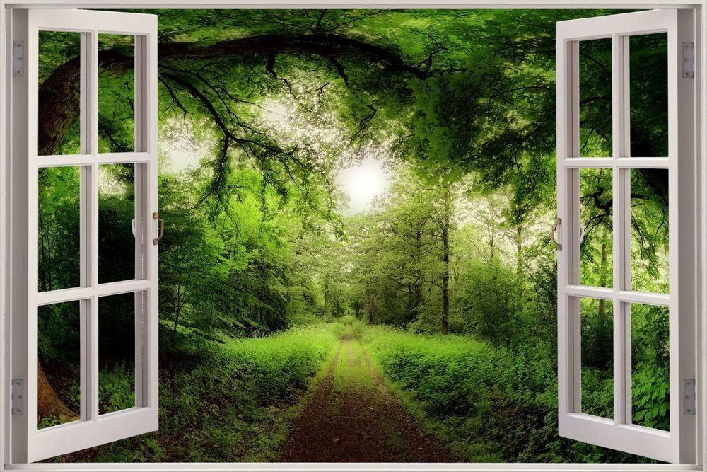 Looking Glass Falls Wallpaper 3d Effect Window View Tree Nature Forest Road Sticker Wall