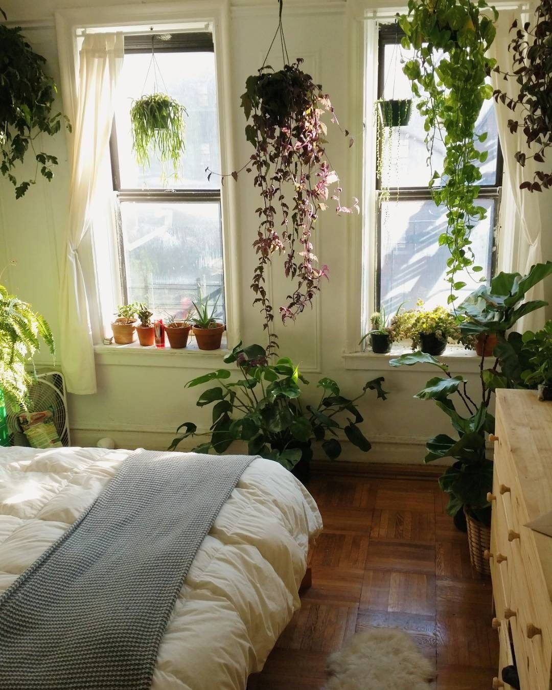 Cool Plants For Your Room Urban Jungle Bloggers On Instagram We Could Stay Here