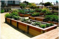 Raised planting boxes https://miller-company-production.s3 ...