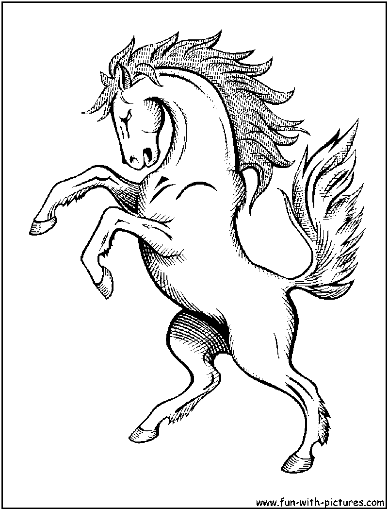 Coloring book pages of horses -  Horse Coloring Book Pictures Wow Com Image Results Download