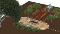 backyard orchard layout - Google Search | Backyard ...