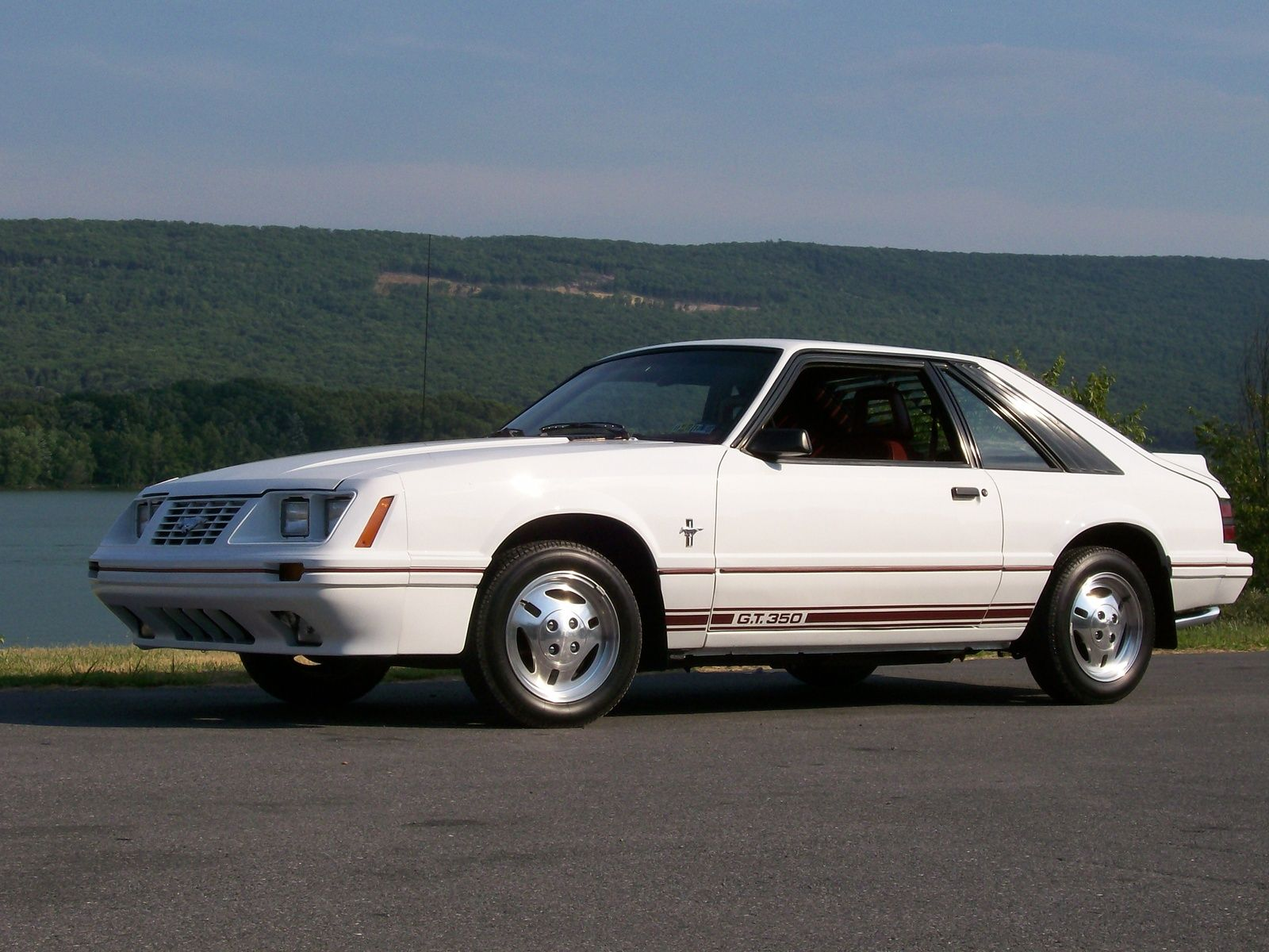 1984 ford mustang gt350 ford mustangs pinterest ford mustang ford and hatchbacks