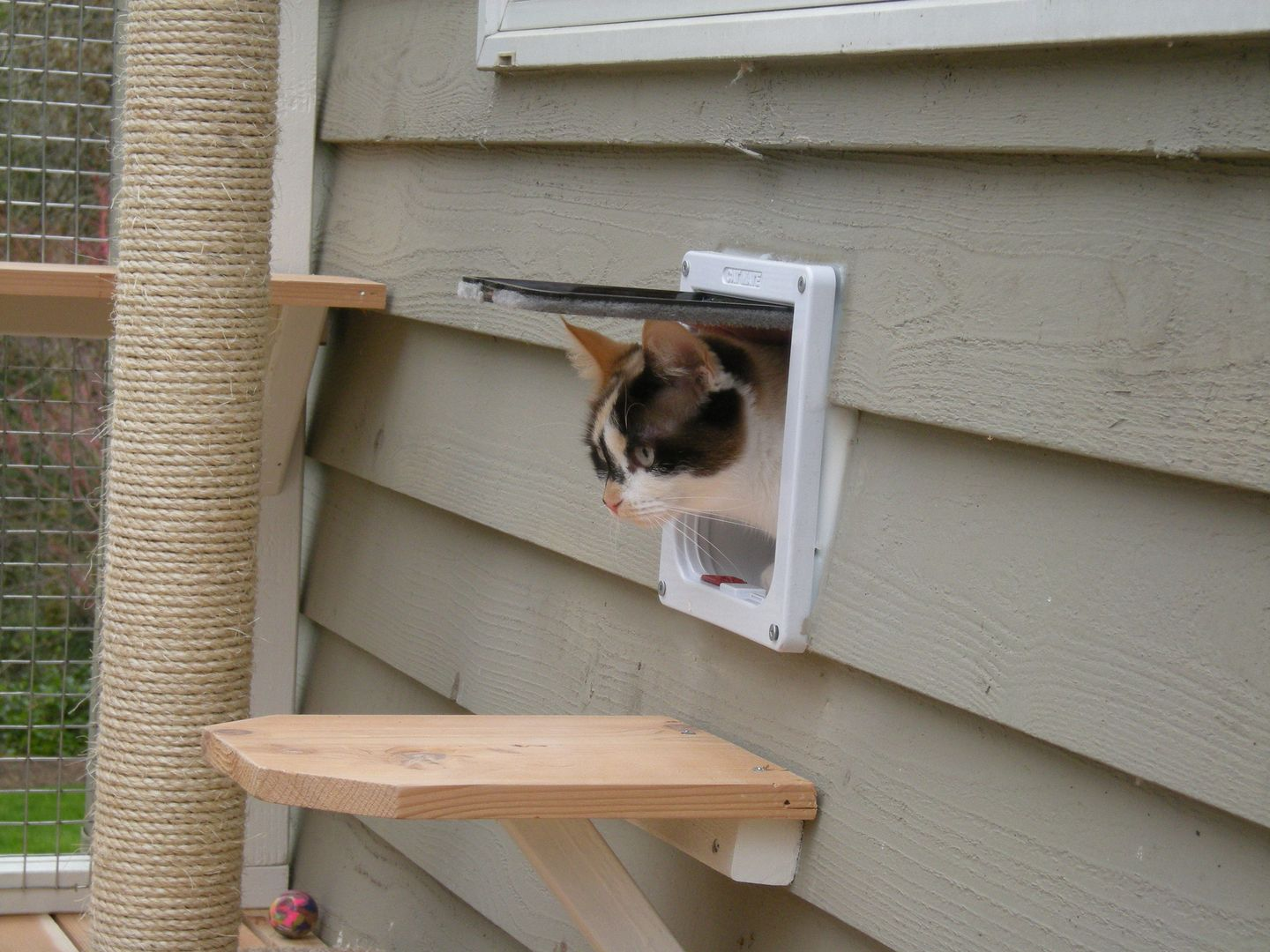 Diy Garden Window Plans Window Box Diy Catio Plans By Catio Spaces And Like Omg