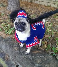 Coolest Flying Monkey Dog Costume | Halloween costume ...