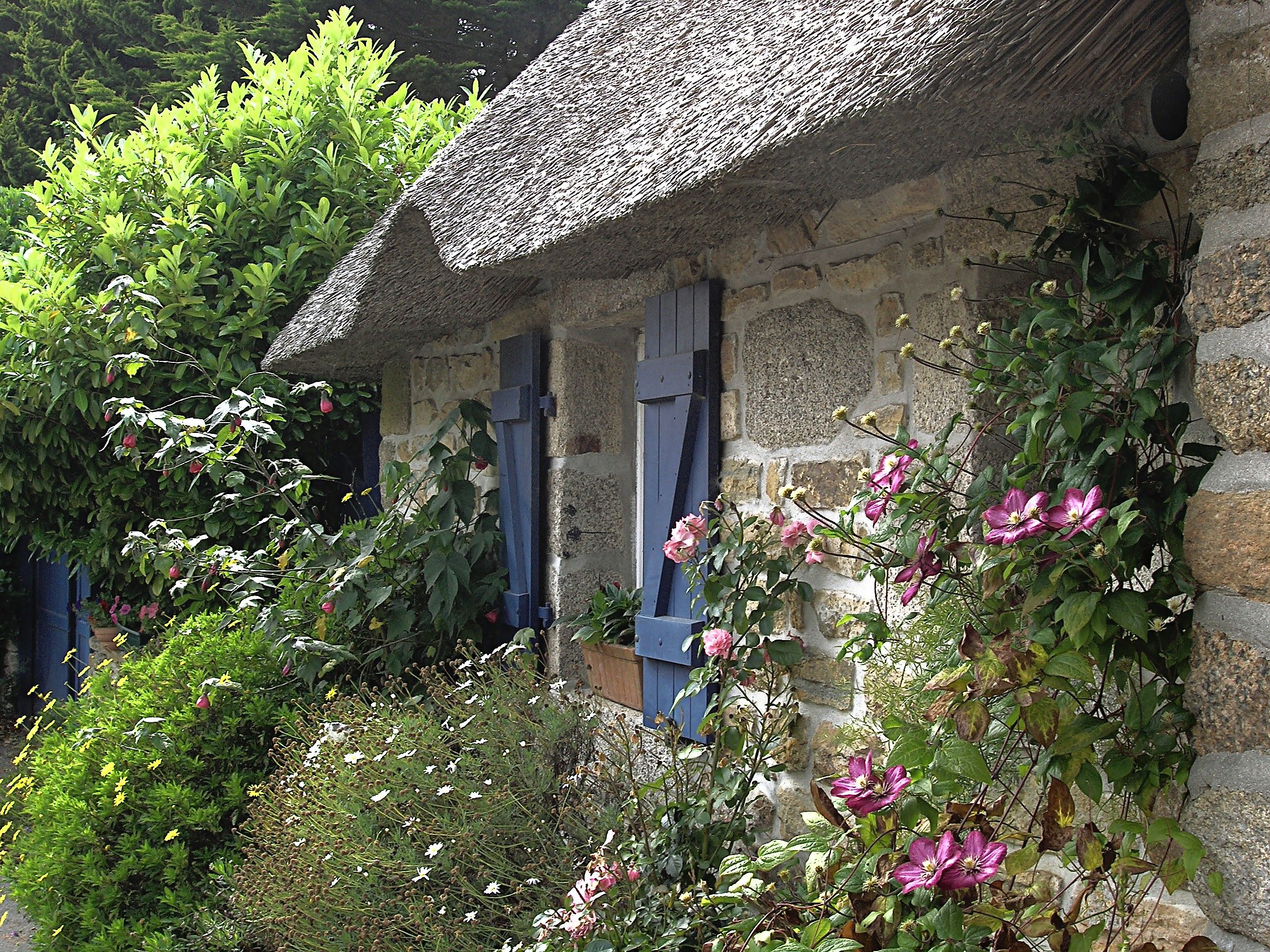 Many of the gardens that we call english gardens are done in a cottage