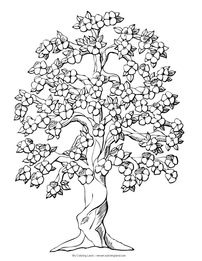 Cute flower coloring pages flower my coloring land