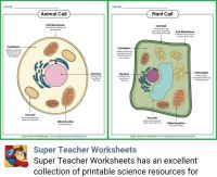 https://www.superteacherworksheets.com/m/?s=full-science ...