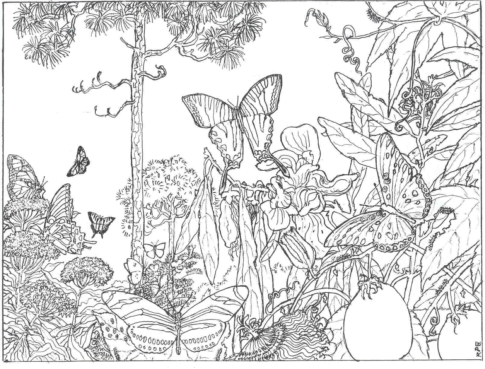 Free printable coloring pages nature - Free Printable Adult Coloring Pages Free Coloring Pages For Kids 288313 Free Printable Coloring Pages Adults