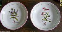 Italian Made Pasta Bowl La Primula Set of 2 Floral Pink ...