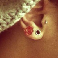 Best 25+ Small ear gauges ideas on Pinterest | Small ...