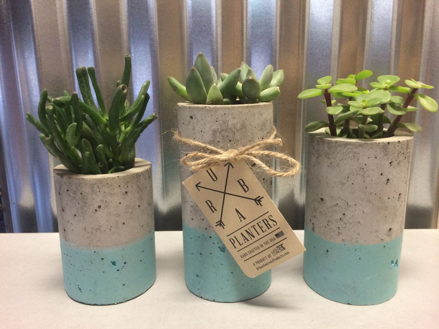 Succulent Planters Wholesale These Concrete Planters Are Designed For Succulents Or Air
