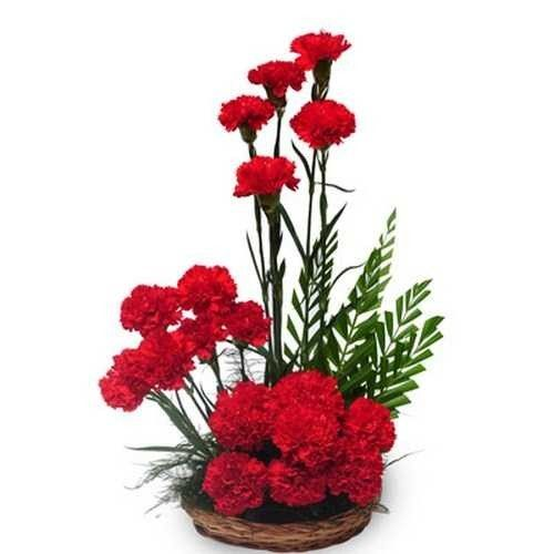 Carnation Flower Gift Basket Arrangement Of 20 Red Carnations. Arrangement
