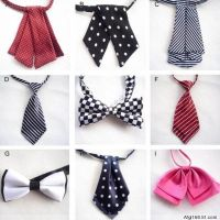 Women Ties on Pinterest