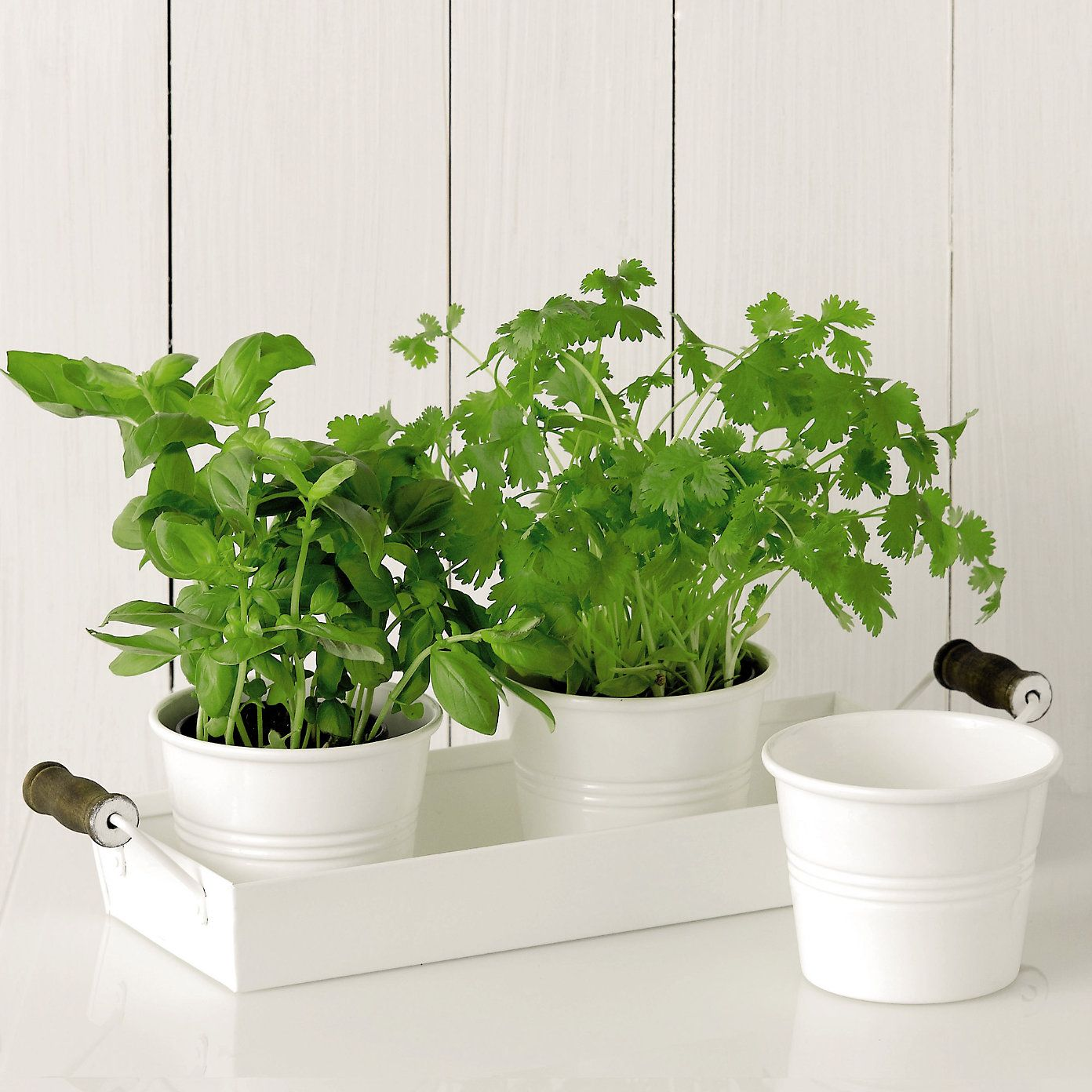 Herb Pots Kitchen Enamelware Herb Pots With Tray From The White Company