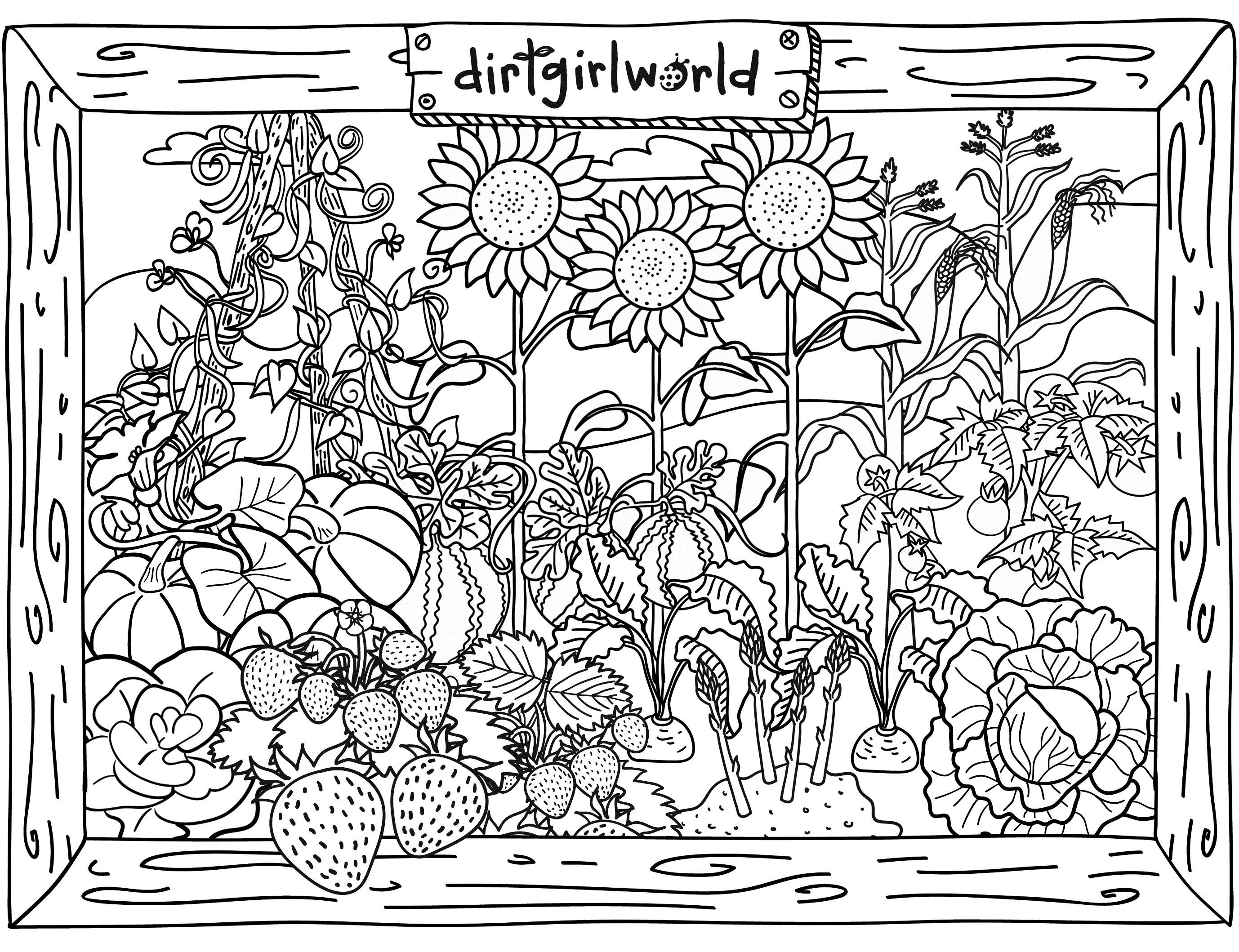 Free printable coloring pages gardens flower garden coloring pages amazing garden coloring pages