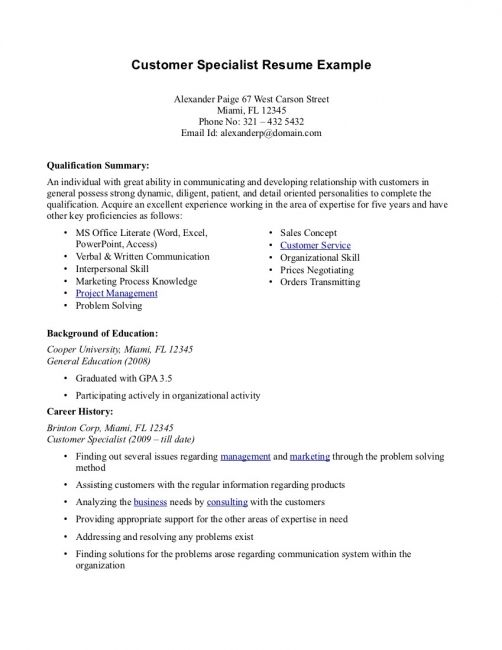 Professional Summary Resume Examples Customer Service resume - professional summary resume