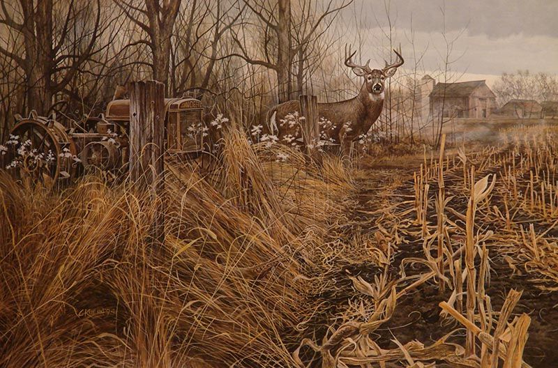 American Paint And Wallpaper Fall River Wildlife Art Prints Plus Original Paintings With A Wide