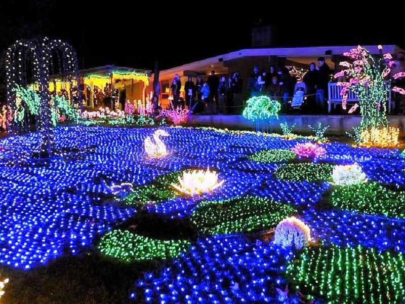 Decoration Front Yard Landscaping Designs Pictures Outdoor - christmas decor clearance sale