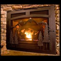 Stylish Custom Fireplace Screens with single Doors   Cabin ...