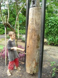 Wood Gong at the Singapore Botanic Gardens | Botanic ...