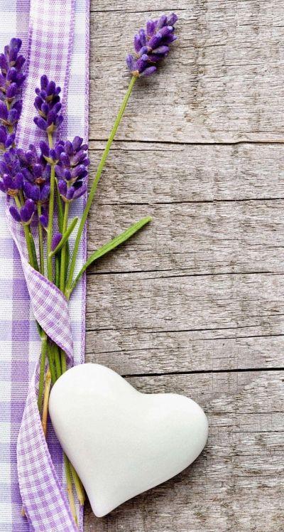 Обои wallpaper iPhone lavender   Обои iPhone wallpapers   Pinterest   Wallpaper and Wallpaper ...