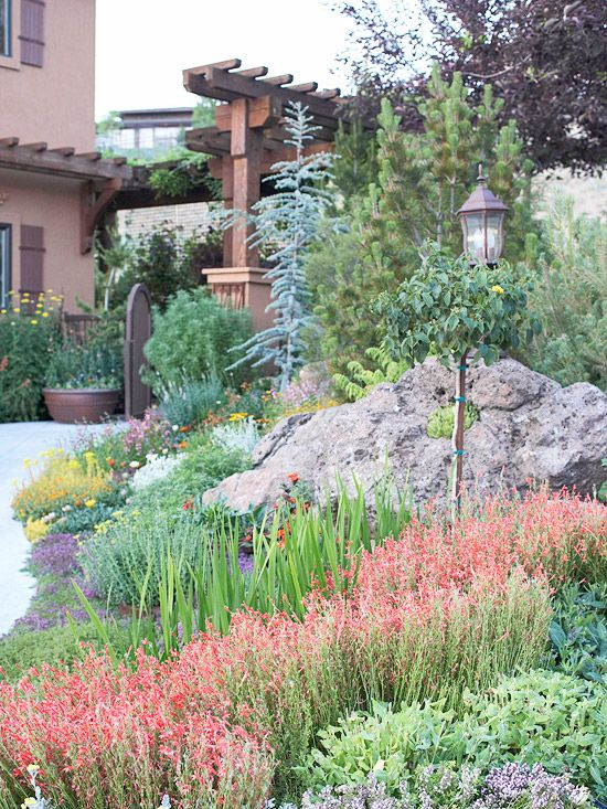 Drought-Tolerant Landscaping Ideas Drought tolerant, Landscaping - drought tolerant garden designs